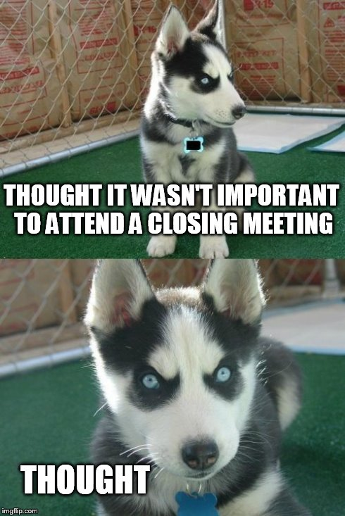 insanity-pup