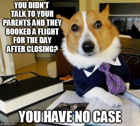lawyer-dog