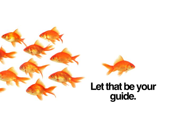 Coaching Digitla Leaders - LEAD365 copy.015